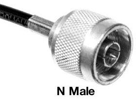 N-Male-BW.jpg