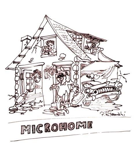 microhome.jpg